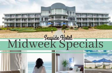 midweek_special-388×252